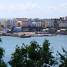 Tenby Harbour by Neil Evans
