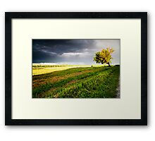Coming Storm Framed Print