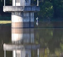 West Barwon Dam - Forrest by forgantly