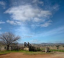 The stock yards ~ Burra Road by Rosalie Dale