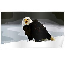 Wild nature - eagle Poster