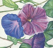 Morning Glories by redqueenself