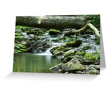 Morning at the Glen Greeting Card