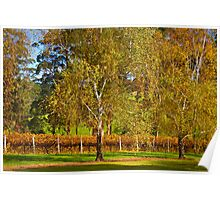 Autumn Vineyard 2012 Poster