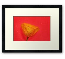 All The Gold in California Framed Print