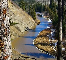 Creek in Early spring by Jim Sauchyn