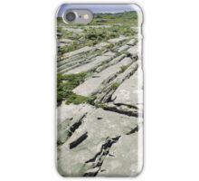 Limestone Landscape iPhone Case/Skin