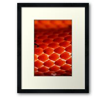 Red to black; Venom lack Framed Print