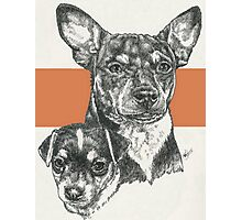 Rat Terrier, Father & Son Photographic Print