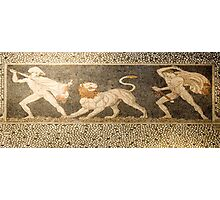 Ancient Greek hunting scene mosaic from Thessaly, Greece  Photographic Print