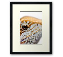 Dragon has his eye on you Framed Print