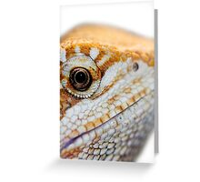 Dragon has his eye on you Greeting Card