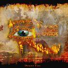 Desert Fire by Skye Ryan-Evans