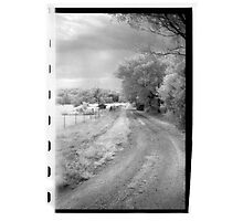 County Drive Photographic Print