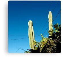 you're cactus Canvas Print