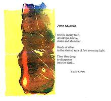 Dewdrops - June 14, 2012 by Nadia Korths