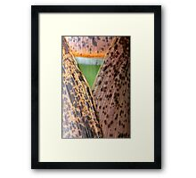 Opening to grow Framed Print