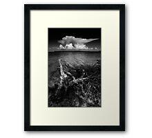 the anvil Framed Print