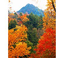 THE CHIMNEY TOPS,AUTUMN Photographic Print
