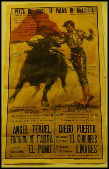 Bullfighting Poster  by Julie Paterson