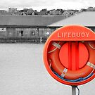 Life in the Old Buoy yet. by dgscotland