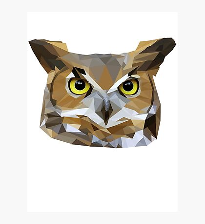 Low Poly Owl Photographic Print