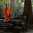 Tranquil Surroundings Ta Prohm Cambodia by Bob Christopher