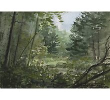 Plein Air 3 Photographic Print