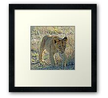 I am off to play with my friends ! Framed Print