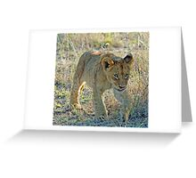 I am off to play with my friends ! Greeting Card