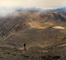 Mt Tongariro Pano by Michael Treloar