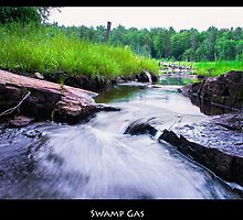 Never Muck Around in a Bog Unless Swamp Gas is Your Thing by Nazareth
