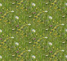 Patchwork of wild flowers by John Dunbar