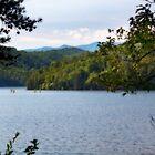Lake Ocoee by BluePhoenix