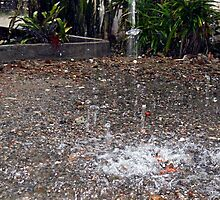 Rain Drop by onkytombe