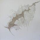 """Organic Map Series - """"Lake Manyame"""" by kate conway"""