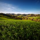 Of Hills and Light by Marco Romani