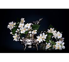 Jasmine bouquet in the teapot Photographic Print