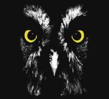Owl Face by Steve Crompton
