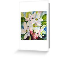 flowers of apple tree Greeting Card
