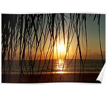 Natural blinds Poster