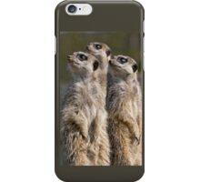 Watching Meerkats iPhone Case/Skin