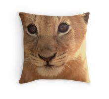 And Some People Think Animals Don't Have Souls... Throw Pillow