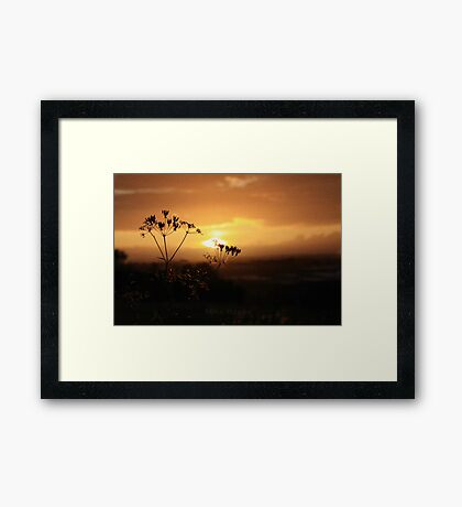 Farley Hill Framed Print