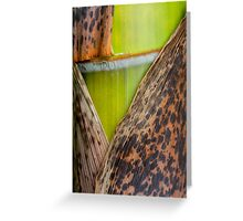 half-naked green Greeting Card