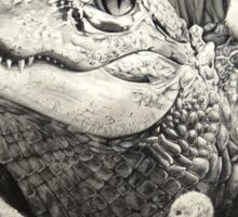 """Gator Gaggle"" Graphite Illustration Sticker"