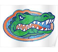 Florida Gator Tie Dye Poster
