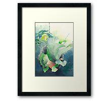 Platicero Framed Print