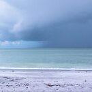 Beach shore by theflostudio