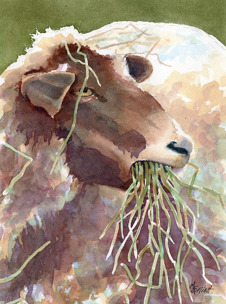 Mmm Mmm Good (Sheep Series 11) by Marsha Elliott